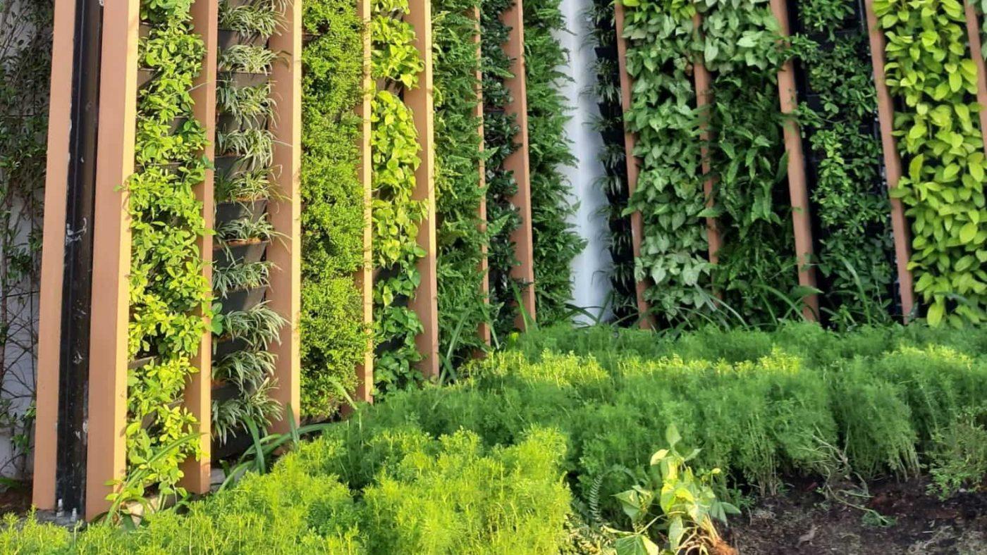 thi công cảnh quan thiết kế vườn đứng